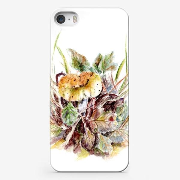 Чехол iPhone «Гриб и листья осенняя ботаническая иллюстрация акварель»