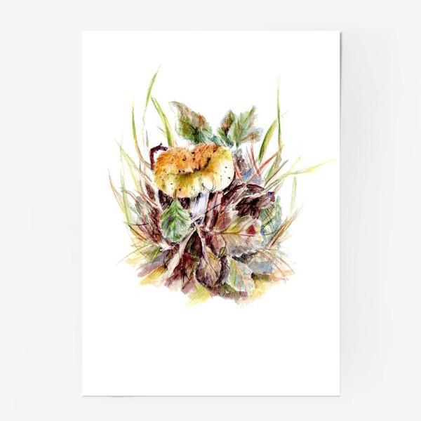 Постер «Гриб и листья осенняя ботаническая иллюстрация акварель»