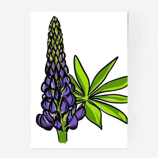 Постер «Цветок люпин с листьями. Синий бутон люпина»