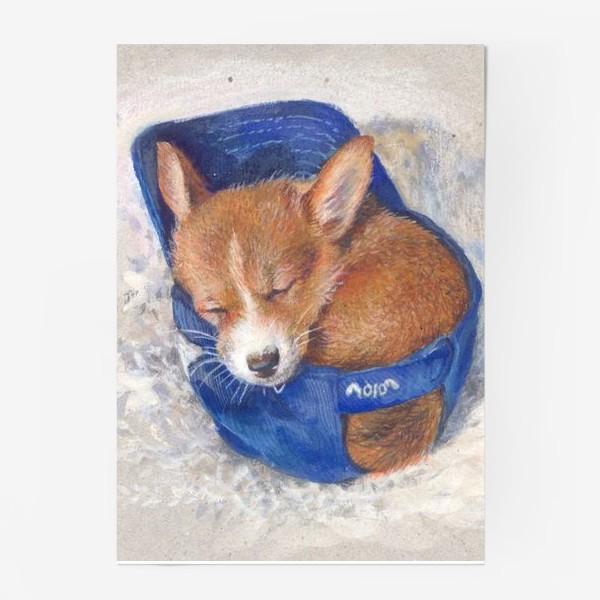 Постер «Малыш корги . щенок ,подарок»