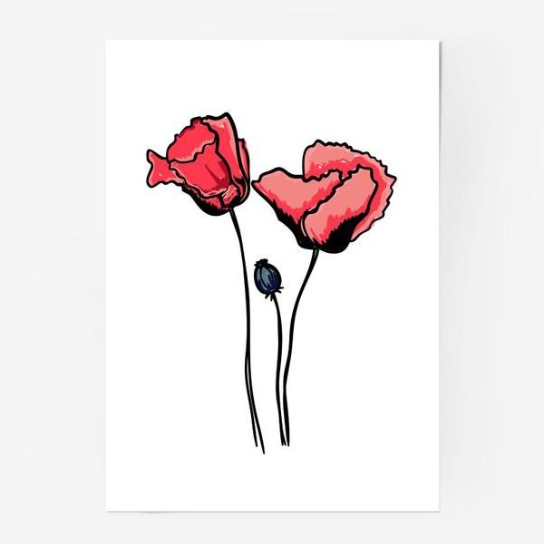 Постер «Красные маки с волнистыми лепестками и коробочкой с семенами»
