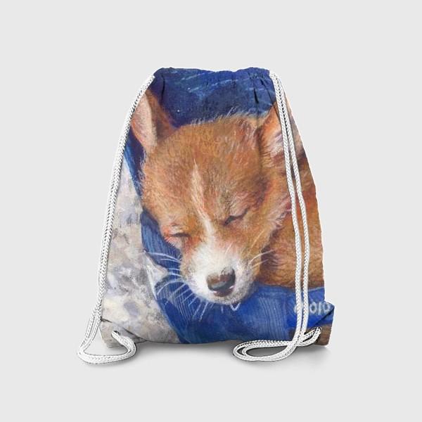 Рюкзак «Малыш корги . щенок ,подарок»