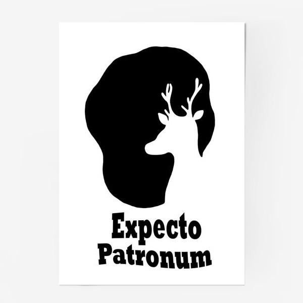 Постер «Экспекто Патронум. Гарри Поттер»
