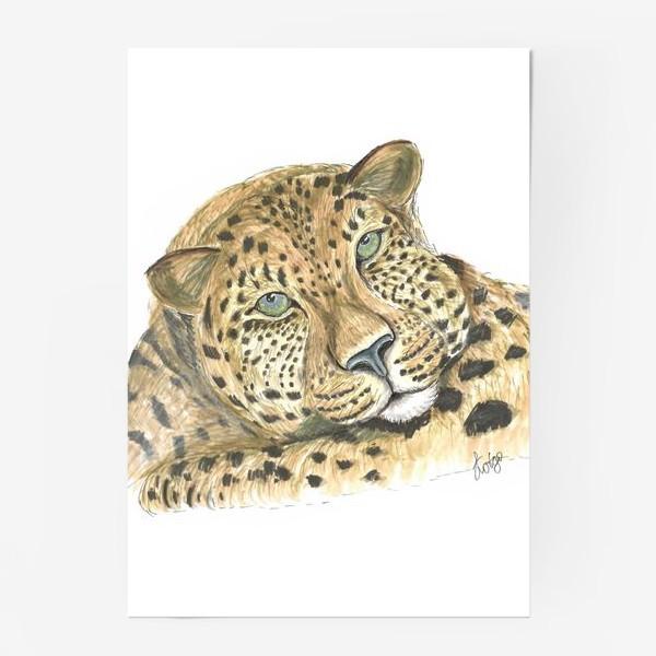 Постер «Задумчивый ягуар»