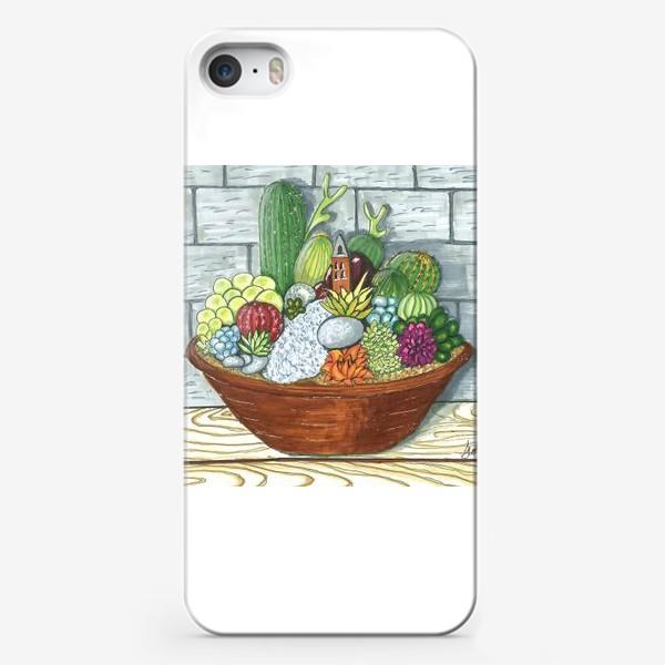 Чехол iPhone «Композиция кактусов»