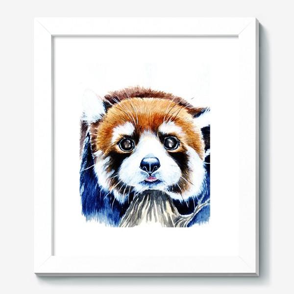 Картина «Рыжая панда»