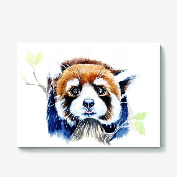 Холст «Рыжая панда»