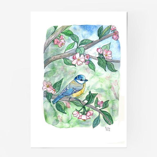 Постер «Синица на яблоне»