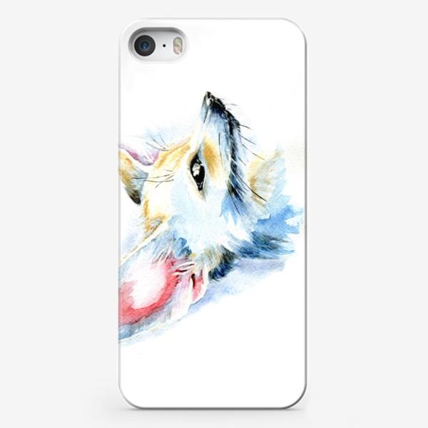Чехол iPhone «Фенек»