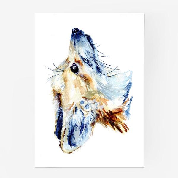 Постер «Проницательный лис»