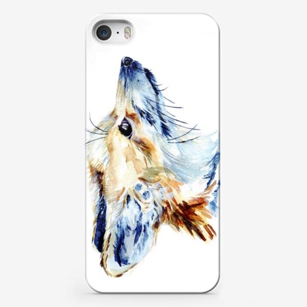 Чехол iPhone «Проницательный лис»