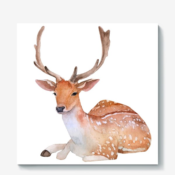 Холст «Reindeer watercolor drawing isolated on white background.»
