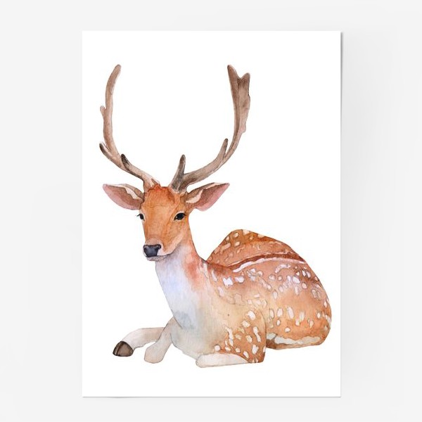 Постер «Reindeer watercolor drawing isolated on white background.»