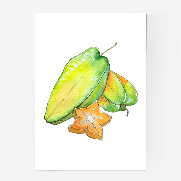 Постер «Экзотические фрукты - Звездный фрукт, Карамбола»