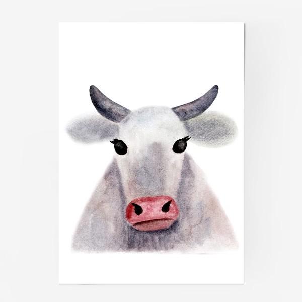 Постер «Серая корова»