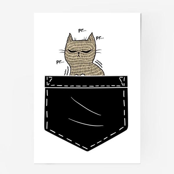Постер «Котик в черном кармане»