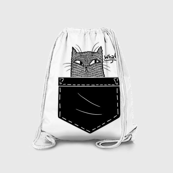 Рюкзак «Кот в черном кармане»
