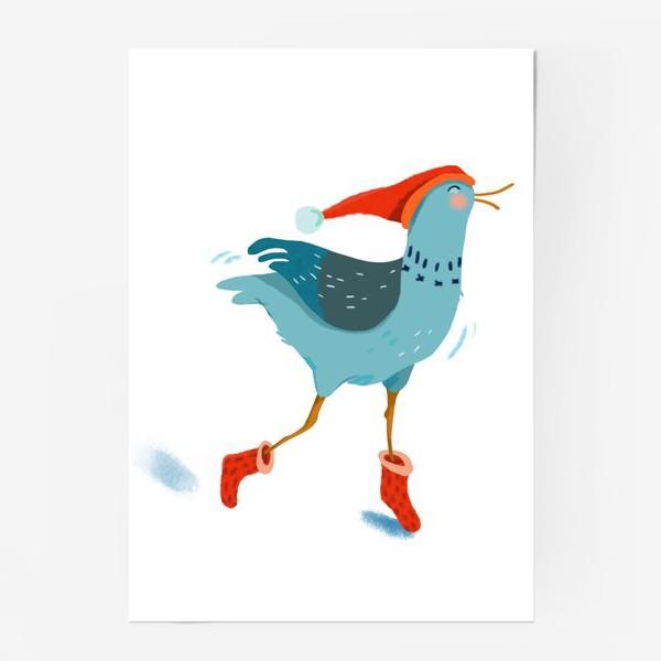 Постер «Птица в красной шапке и в носках»