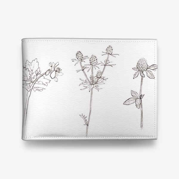 Кошелек «Ботаника. Графика»