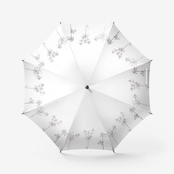 Зонт «Ботаника. Графика»