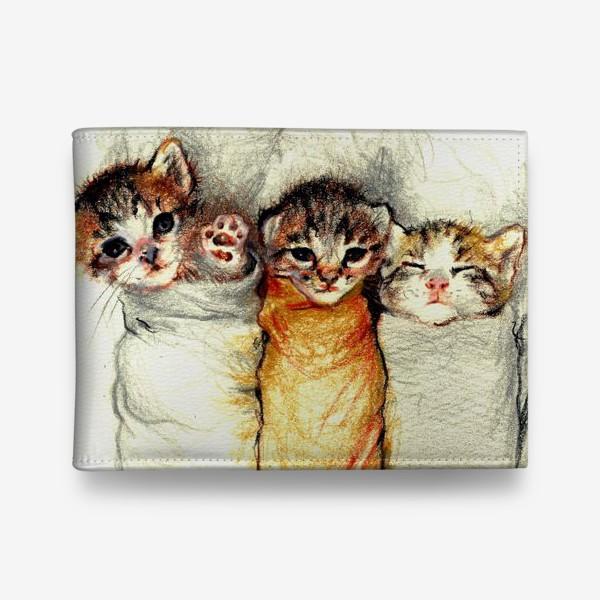 Кошелек «Котята,милые котики, подарок »
