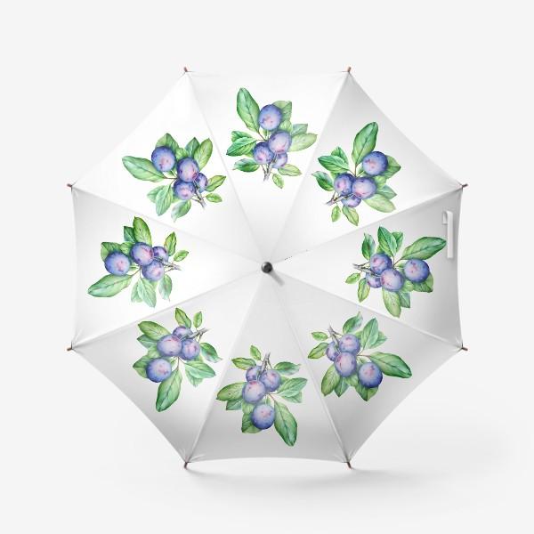 Зонт «Ветка сливы»