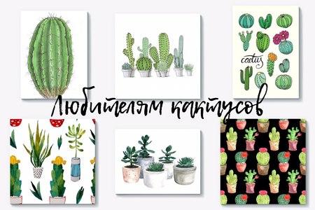 Подарки с тематическими принтами: любителям кактусов